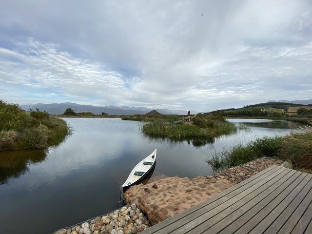 2020南非之旅——第五天-第6张图片-Celia的博客