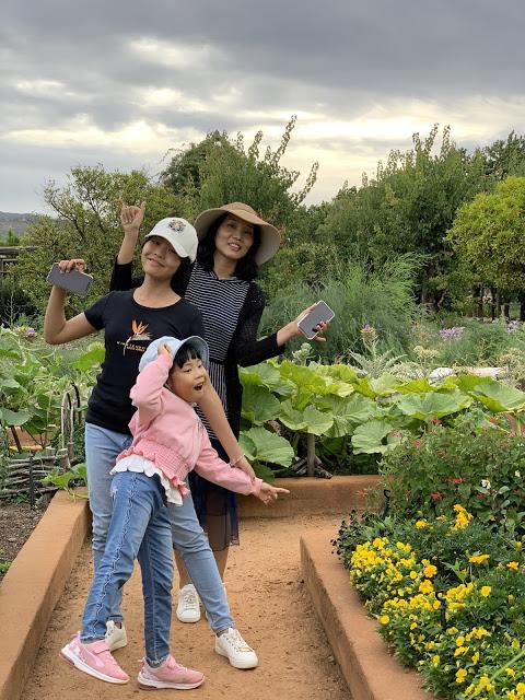 2020南非之旅——第五天-第12张图片-Celia的博客
