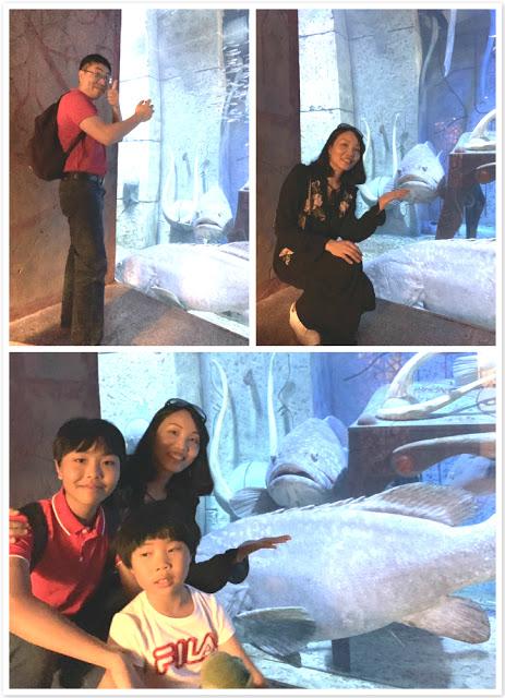 Our Trip to Dubai -- The 4th Day -- The Atlantis Aquarium and a desert safari-第4张图片-Celia的博客